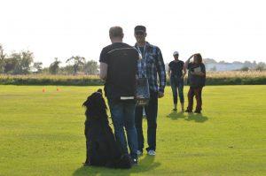 Tävlingsträning lydnad/brukslydnad @ Lidköpings Brukshundklubb