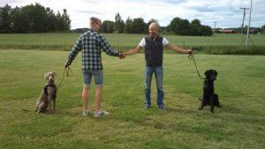 Hundmötesträningar i vår @ Lidköpings Brukshundklubb