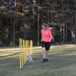 INFO: Agilityträning