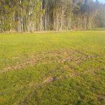 Förstörelse på nya gräsplanen