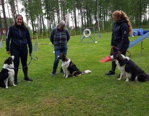 Hundmötesträningar vinter/vår 2020 @ Lidköpings Brukshundklubb