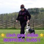 Lisch goes online  – INOFFICIELL KLASS 1!