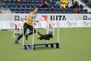 Helgkurs i Agility med Anne Karlsson @ Lidköpings Brukshundklubb