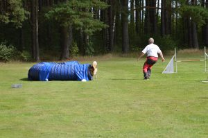 Träningstävling Agility @ Lidköpings Brukshundklubb