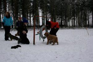 Sportlovsaktivitet tisdag 12/2 @ Lidköpings Brukshundklubb