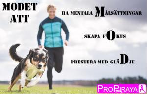 MOD – en föreläsning med populära Eva Marie Wergård för dig som vill våga! @ Lidköpings Brukshundklubb